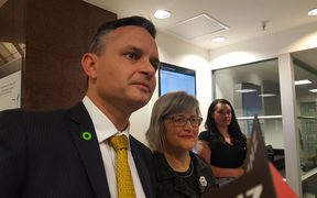 Green Party leader James Shaw going into talks with Labour.