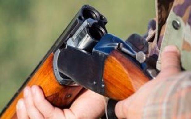 Nz Gun Laws Image: Police Consider Gun Law Changes