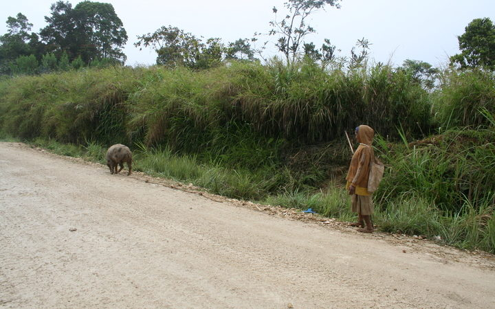 A woman and her pig, roadside, Hela Province, Papua New Guinea.