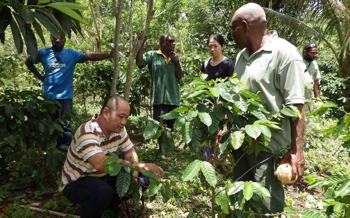 Japanese cafe owner keen on Vanuatu coffee