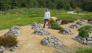 Malcolm Rutherford, curator of the 1769 Garden, stands amongst rock mounds arranged in a quincunx layout. Each mound is home to a rare or unusual plant, including short-lived herbs.