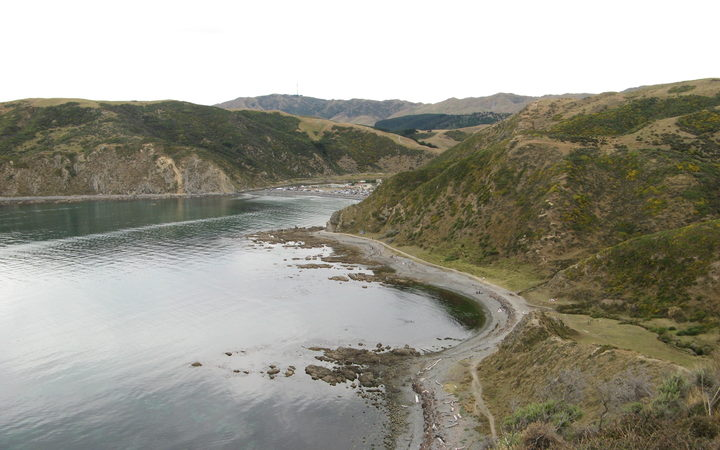 Police recover body of missing diver off coast of Makara, Wellington