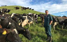 Hastings District dairy farmer and rural community board member Nick Dawson
