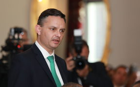 Green leader James Shaw makes his affirmation.