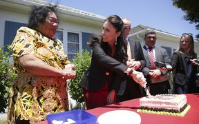 Jacinda Ardern, making the announcement at the first state house in Miramar, Wellington, said the move was a starting point for reducing homelessness and halting the decrease in state housing stock.