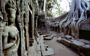 The jungle is gradually swallowing the ruins of Ta Prohm, one of the temples at Angkor in Siem Reap, Cambodia.