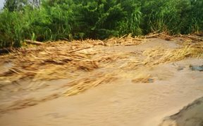 Flooding from the Markham River in Papua New Guinea's Morobe Province.