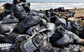 Bags of rubbish removed during the Greymouth beach clean-up.