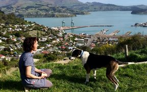 Hannah Beehre and her dog Scout with the view over Lyttelton