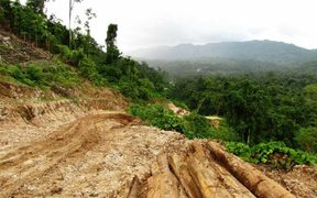 Logging tracks run like scars across the face of a tropical rainforest on Malaita in Solomon Islands.
