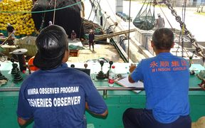 Monitors observing a purse seiner unloading in Majuro