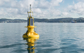 NIWA's WRIBO harbour buoy transmits real time information about sea conditions such as temperature, salinity and wave heights.