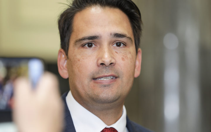 Simon Bridges will stand for National Party leader.