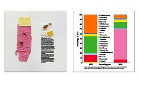 N=1 is an art work by Billy Apple. The left hand panel contains used toilet tissue from 1970 and 2016, and the bar graphs show the different proportions of microbes present in those two samples.