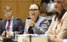 Melissa Lee speaks to the heads of RNZ at the select committee meeting.