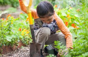 An Owaiaraka School student participating in the Garden to Table programme - one of the charities supported by the One Percent Collective.