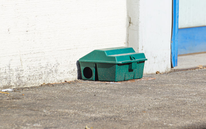 Stock photo of a rat trap.