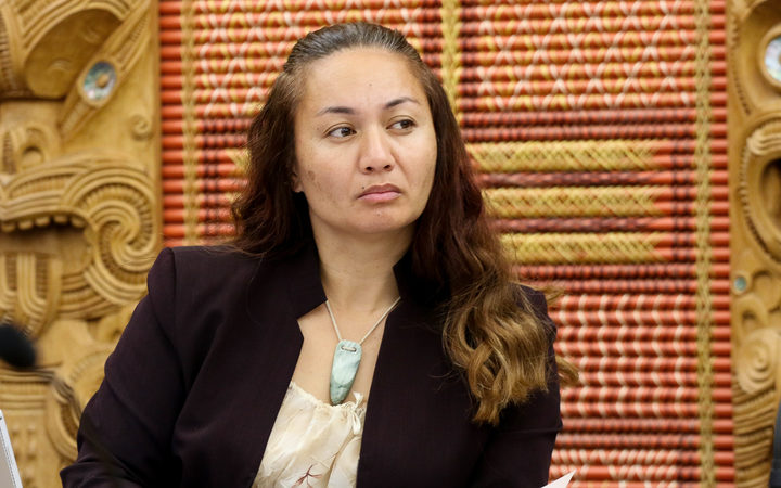 Green MP Marama Davidson in the Maori Affairs Select Committee 2017.