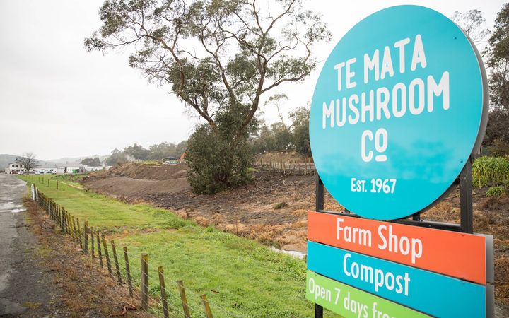 Te Mata Mushroom Company in Havelock North