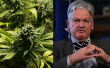 Peter Dunne says raw cannabis is not on the agenda for the current government.