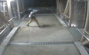 CCTV footage of a man sought over the early morning attack of a woman in St Mary's Bay in Auckland.