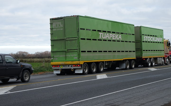 A stock truck used to transport cattle.