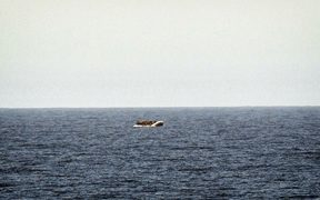 A rubber boat with migrants is seen off the Libya coast in May.