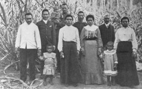 About 60,000 Pacific Islanders were taken from their mainly Melanesian homelands to Australia in the 1800s to work on plantations.
