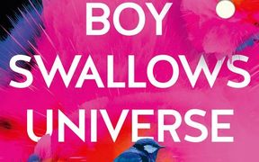 "cover of the book ""Boy Swallows Universe"" by Trent Dalton"