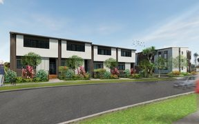 An artist's impression of some of the 10,000 proposed homes in the Mangere redevelopment.