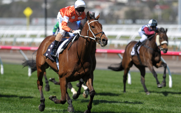 Glen Boss rides the Who Shot Thebarman to victory in The Bart Cummings at Flemington Racecourse in Melbourne on 4 October 2014.