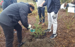 Christchurch's Student Volunteer Army and students from the Marjory Stoneman Douglas High School planting trees.