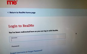 The government's RealMe login page.