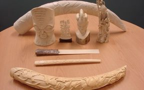 Eight items made from African elephant tusks that cost a New Zealander $12,000 in fines.
