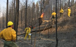 Corporal Thomas Grant supervises US firefighters who are hot-spotting & felling trees as they help battle the Carr Fire in northern California.