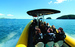 Bay of Islands Tourism