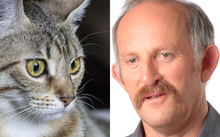 A cat and Gareth Morgan