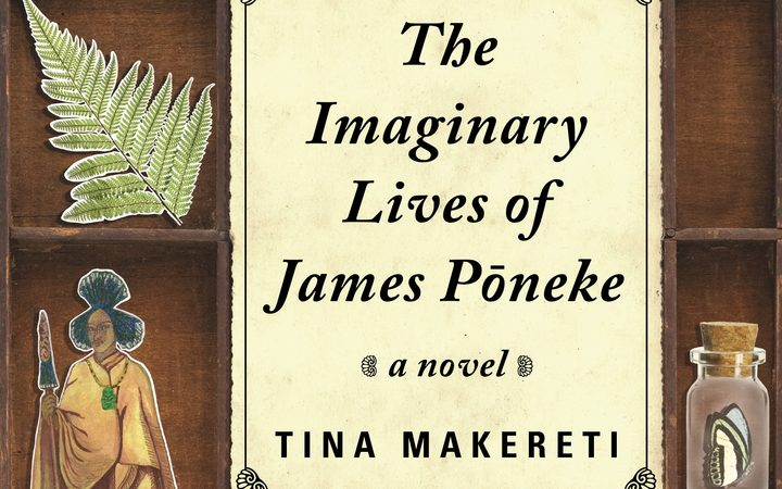 "cover of the book ""The Imaginary Lives of James Poneke"""