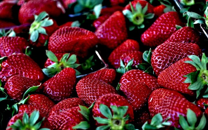 Australia's strawberry scare spreads as needles found in New Zealand