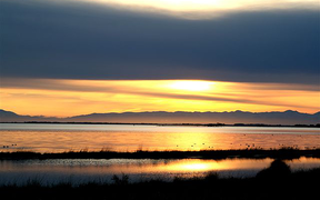 Te Waihora/Lake Ellesmere is New Zealand's fifth largest lake, its largest coastal lagoon, and an internationally recognised wetland.
