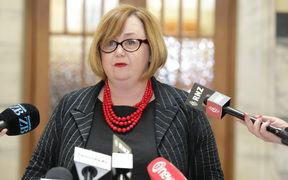 Minister of Government Digital Services Megan Woods announced that hundreds of pages of documents regarding Derek Handley have just been released.