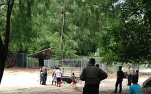 A Tamil asylum seeker on Nauru spent nine hours up a tree threatening to commit suicide on Sunday.
