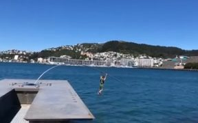 The Wellington waterfront sculpture by Len Lye was snapped by a man swinging from it.