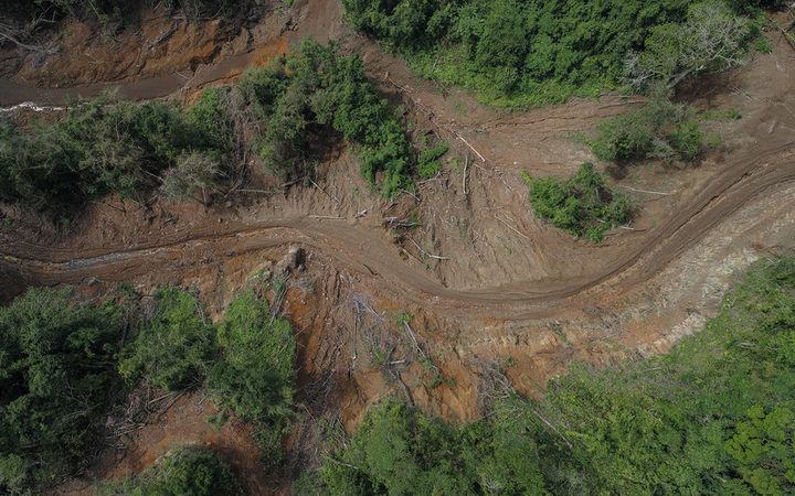 Aerial photo of logging road in the Solomon Islands