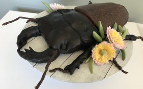 One of the entries for the Critter of the Week bake off - a stag beetle