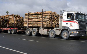 Tree trunks on a logging truck on 29 August 2013 in Kaitaia, Northland.