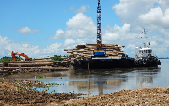 Logs loaded onto barge at Kanduanum on Sepik River; Turubu SABL, East Sepik Province, PNG.