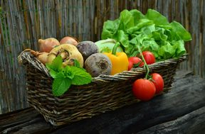 A basket of vegetables from the garden