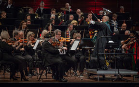 NZSO plays Harry Potter