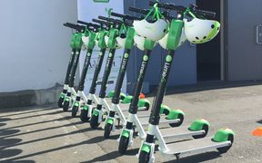 Rack 'em up: Lime scooters for hire outside the TraffiNZ conference on Wellington's waterfront this week - as part of a charm offensive in the capital.